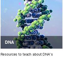 animations για το DNA
