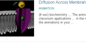 Animations Βιοχημείας